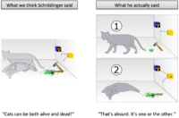 Learning Gotcha: How We Misunderstood Schrödinger's Cat