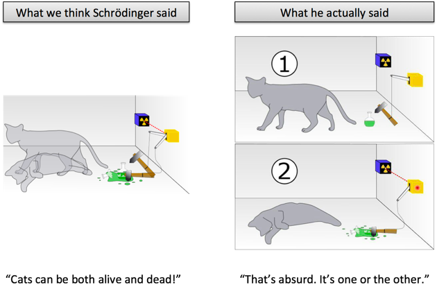 schroedinger's cat misconception