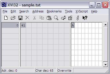 notepad_A_hexedit.PNG