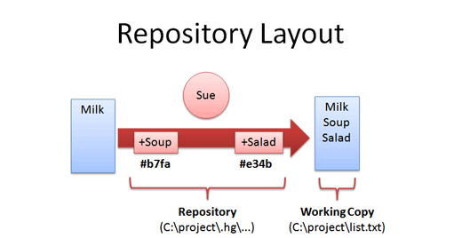 distributed version control repo layout